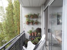 On the balcony, Spath added white butterfly chairs and a vertical garden of sorts. We offer tips to Steal This Look on Gardenista today. For more ideas, see Rental Garden Makeovers: 10 Best Budget Ideas for an Outdoor Space on Gardenista. Tiny Studio Apartments, Studio Apartment Layout, Modern Apartments, Small Balcony Garden, Balcony Gardening, Balcony Ideas, Garden Landscaping, San Francisco, Apartment Balconies