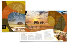 African Safari Brochure Template Design by StockLayouts