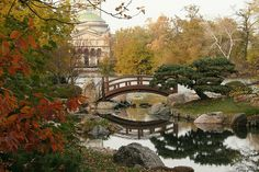 Japanese Garden, in autumn, behind the Museum of Science & Industry, Chicago