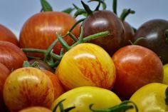 verse Tomaten Verse, Vegetables, Food, Veggie Food, Vegetable Recipes, Meals, Veggies