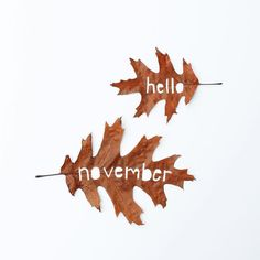 A new month - a new beginning  For what its worth: its never too late to be whoever you want to be. I hope you live a life youre proud of and if you find that youre not I hope you have the strength to start all over again.