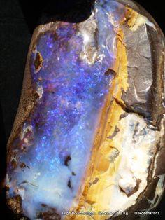 large [1.8kg] Boulder Opal Specimen , Queensland , Australia