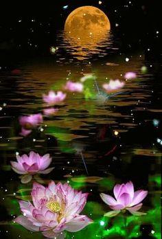 By Artist Unknown. Beautiful Flowers Wallpapers, Beautiful Nature Wallpaper, Beautiful Moon, Pretty Wallpapers, Beautiful Roses, Beautiful Landscapes, Beautiful Fantasy Art, Gif Bonito, Good Night Gif