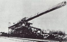 'DORA' 800mm