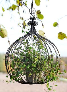 Garden Crafts, Garden Art, Container Plants, Container Gardening, Shabby Chic Farmhouse, Garden Maintenance, How To Attract Birds, Small Space Gardening, My Secret Garden
