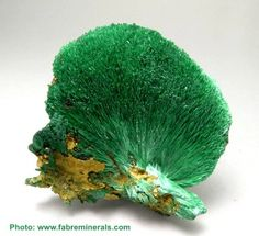 Malachite Love the color...but to me, it looks like a giant broccoli spear.