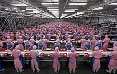 Uma das linhas de montagem do IPhone. Nelas, 14 trabalhadores suicidaram-se, só em 2010, por não suportarem condições de trabalho física e psiquicamente demolidoras