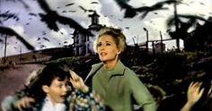 The Birds (Kuşlar):Hitchcock'un belki en iyi filmi değil ama en popüler filmlerinin başında geliyor. Üstat büyük yönetmenlik başarısıyla çoğu kişinin evinde beslediği kuşları (tabii karga ya da martı beslenmiyordur ama) bir korku unsuru haline getirmeyi başardı. Filmin bir başka özelliği de (diğer Hitchcock filmlerinde görmediğimiz şekilde) bir lanete ya da açıklanamayan kötülüğe dayanmasıdır. Ayrıca, Üstat başrolü verdiği (bir başka sarışın) Tippi Hedren'ı da sinema dünyasına tanıtmış oldu.