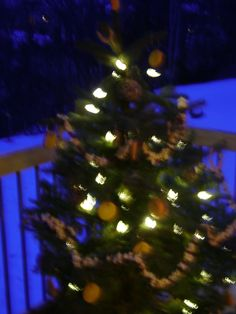 outdoor christmas tree for the birdswhat a cute ideaadd peanutberry garland and bird seed ornamentslove it and the birdies will t