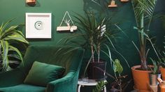 Golden Rule in Excelsior's moody green wall is Benjamin Moore's Rainforest Foliage 2017 Design, Design Trends, Dining Room Feature Wall, Monochromatic Room, Benjamin Moore Paint, Wall Treatments, Room Paint, Paint Colors, New Homes