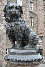 Statue of Greyfriar's Bobby, located in Edinburgh, Scotland.  Legend has it that the dog spent the least 14 years of his life guarding the grave of his master, John Gray, known as Old Jock, who died on Feberuary 08, 1858, who was a night watchman for the Edinburgh Ciy Police.  When Bobby died, he was buried inside the gate of Greyfriar's Kirkyard.
