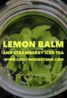 Lemon Balm and Strawberry Iced Tea Cindy Goes Beyond