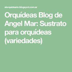 Orquídeas Blog de Angel Mar: Sustrato para orquídeas (variedades)