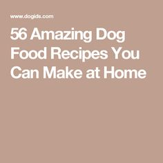 56 Amazing Dog Food Recipes You Can Make at Home