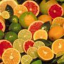 Citrus: Planting, Growing, and Harvesting Lemons, Oranges, Limes, Mandarins, and Tangelos