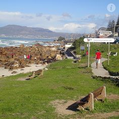 A Canadian Living in Cape Town Cape Town Accommodation, Cape Town South Africa, Places Of Interest, Live, Dolores Park, Places To Visit, Catwalk, African, Travel