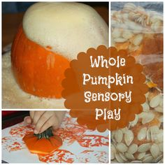 How To Use All Of The Pumpkin For Play & Exploration from Little Bins for Little Hands