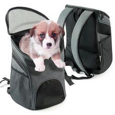 de37e35ffc Jiangxing Portable Cat Dog Pet Carrier Mesh Pup Pack Soft-sided Outdoor  Travel Backpack 4
