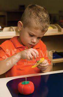 NAMC Montessori Teacher Training Blog: What is Executive Function? Montessori Perspectives