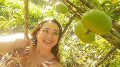 Waimalu Valley Gourds, A Kaaihue Foundation for Restoring and Preserving Native Hawaiian Artifacts. #ipufarm #KumuKaaihue #Manumele #IpuHeke #HawaiianGourds #WaimaluGourdFarm #AulaniKaaihue Gourds, Hawaiian, Foundation, Fruit, Pumpkins, Gourd, Foundation Series