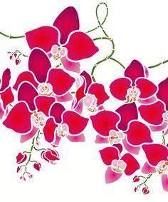 Большой орхидеи Цветы трафарет. Большой Моль Орхидея Трафарет