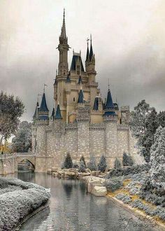 At the Drachenburg Castle in Konigswinter, Germany.