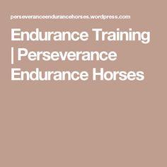 Endurance Training | Perseverance Endurance Horses