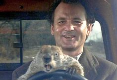 Lessons we learned from Groundhog Day, the movie » The Write Side of My Brain