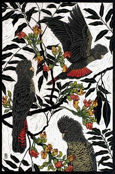 07-red-tailed-black-cockatoo-linocut-rachel-newling