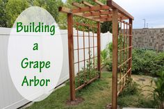 Building a Grape Arbor is easier than you might think. Check out this post to see how we built this simple but beautiful grape arbor at our home.