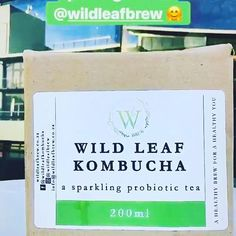 😍A photo from opening her Wild Leaf Kombucha 💚 We hope you loved our brew! Kombucha Probiotic, Hope You, Our Love, Brewing, Posts, Instagram, Messages, Cooking