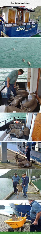 Went fishing but caught deer instead