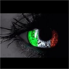 Another Italian Eye, I like this one the best.........