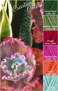 Creative Colors - Succulent Palette - The Purple Poncho Color Combinations for all your craft projects, find them here!