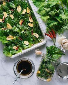 食 食 a plus size clothing - Plus Size Easy Cooking, Healthy Cooking, Cooking Recipes, Healthy Recipes, Chicken Basil Pasta, My Favorite Food, Favorite Recipes, Japanese Food, Japanese Meals