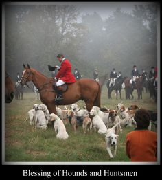 Fox Hunting Blessing of the Hounds
