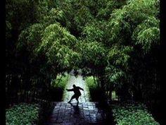 Bohdi Sanders - Meditative Journey through Asian Wisdom