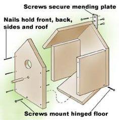 Open Box Robin Bird House Plans By spoiledbirds   Bird Feeders ...