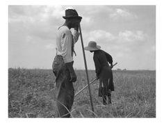 Lovely composition  Dorothea Lange