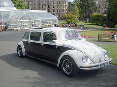 VW Beetle Stretch Limo