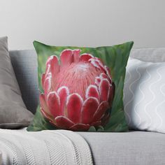 Millions of unique designs by independent artists. Find your thing. Throw Pillows Bed, Bed Throws, Floor Pillows, Decorative Throw Pillows, Art Boards, Framed Art Prints, Decor Ideas, Gift Ideas, Lovers