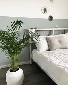 Best Six Plants for Better Sleep - Slaapkamer ideeën Best Six Plants for Better Sleep Early Dew in een slaapkamer Bedroom Plants, Small Room Bedroom, Cozy Bedroom, White Bedroom, Master Bedroom, Bedroom Decor, Decor Room, Interior Design Living Room, Living Room Designs