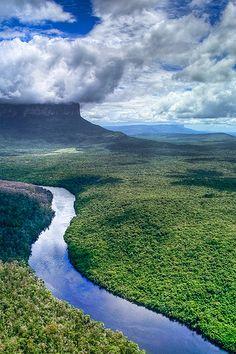 La frontera de la selva de Venezuela y Brasil