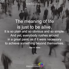The Meaning Of Life Is Just To Be Alive - https://themindsjournal.com/meaning-life-just-alive/