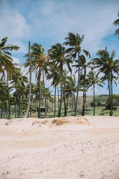 Strand, Beach, Water, Outdoor, Easter Island, South America Travel, Mysterious Places, Volcanoes, Round Trip