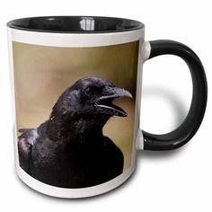 3dRose American Crow Corvus brachyrhynchos Bird Photo Animal Photography - Two Tone Black Mug, 11-ounce