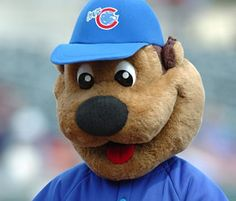 Cheers to Iowa Cubs Home Opener.and Cubbie Bear! Iowa Cubs, Sports Advertising, Go Cubs Go, Minor League Baseball, Fun Group, Cubs Fan, All Kids, Chicago Cubs
