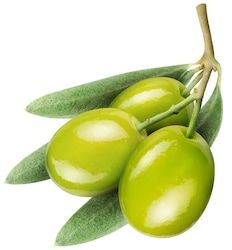 Find Olives Olive Leaves On White Background stock images in HD and millions of other royalty-free stock photos, illustrations and vectors in the Shutterstock collection. Ballet Dance Photography, Fruits Photos, Olive Recipes, Italian Life, Botanical Prints, Decoupage, Flora, Berries, Food And Drink