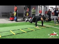 Agility Ladder Upper and Lower Body Circuit Training | Speed Performance - YouTube