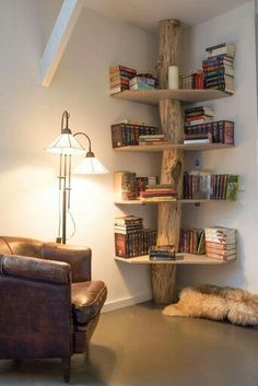 Corner shelving, it's a great way to use space, raw timber shelving would look better,